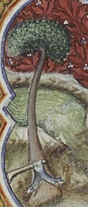 Ax laid to the root of the tree, detail of the Baptism of Christ, Unknown Illustrator of Petrus Comestor's Bible Historiale, 1372
